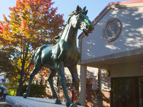 The Mount Ida mustang statue