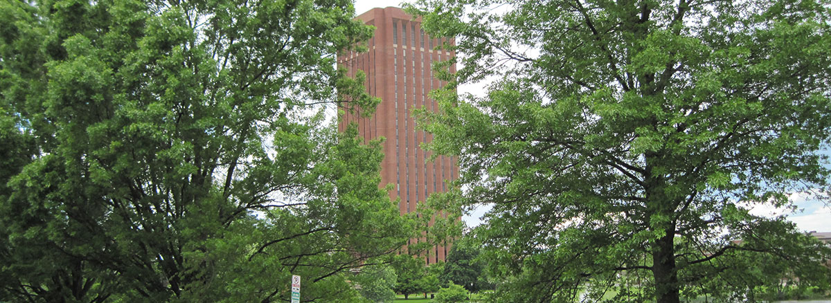 W.E.B. Du Bois Library at UMass Amherst, taken through spring foliage