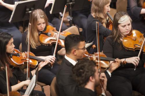 Orchestra violinists