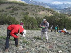 Scientists and natural resource managers are working together to understand how safe havens from climate change might be identified and conserved to protect species and cultural traditions. Photo courtesy National Park Service/Sarah Stock.
