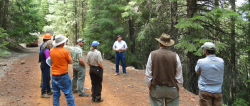 A group of researchers, scientists and managers examine forest conditions and habitat suitability. One of the uncertainties they face is how alternative fuel management practices could reduce fire risk. By looking at various scenarios and the associated uncertainty, the team can develop risk metrics to help them compare the practices under consideration.