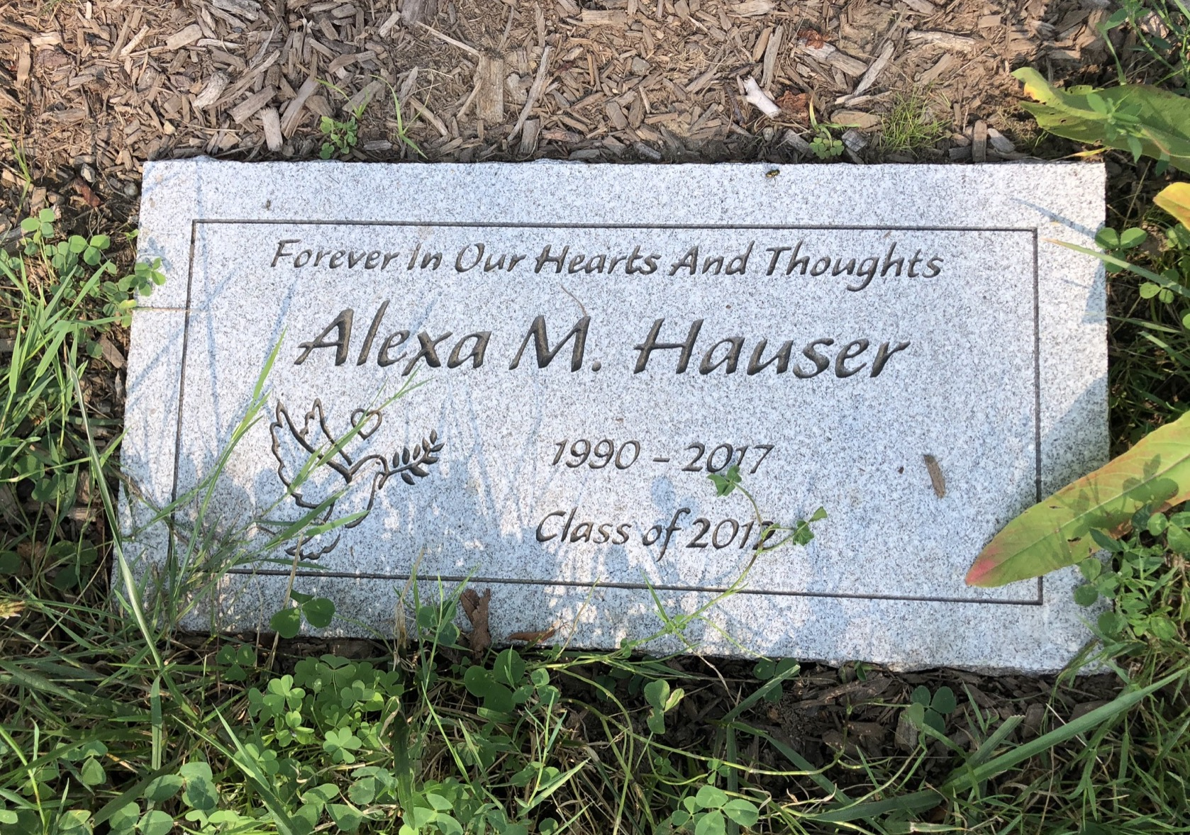 Alexa Hauser Trident Maple