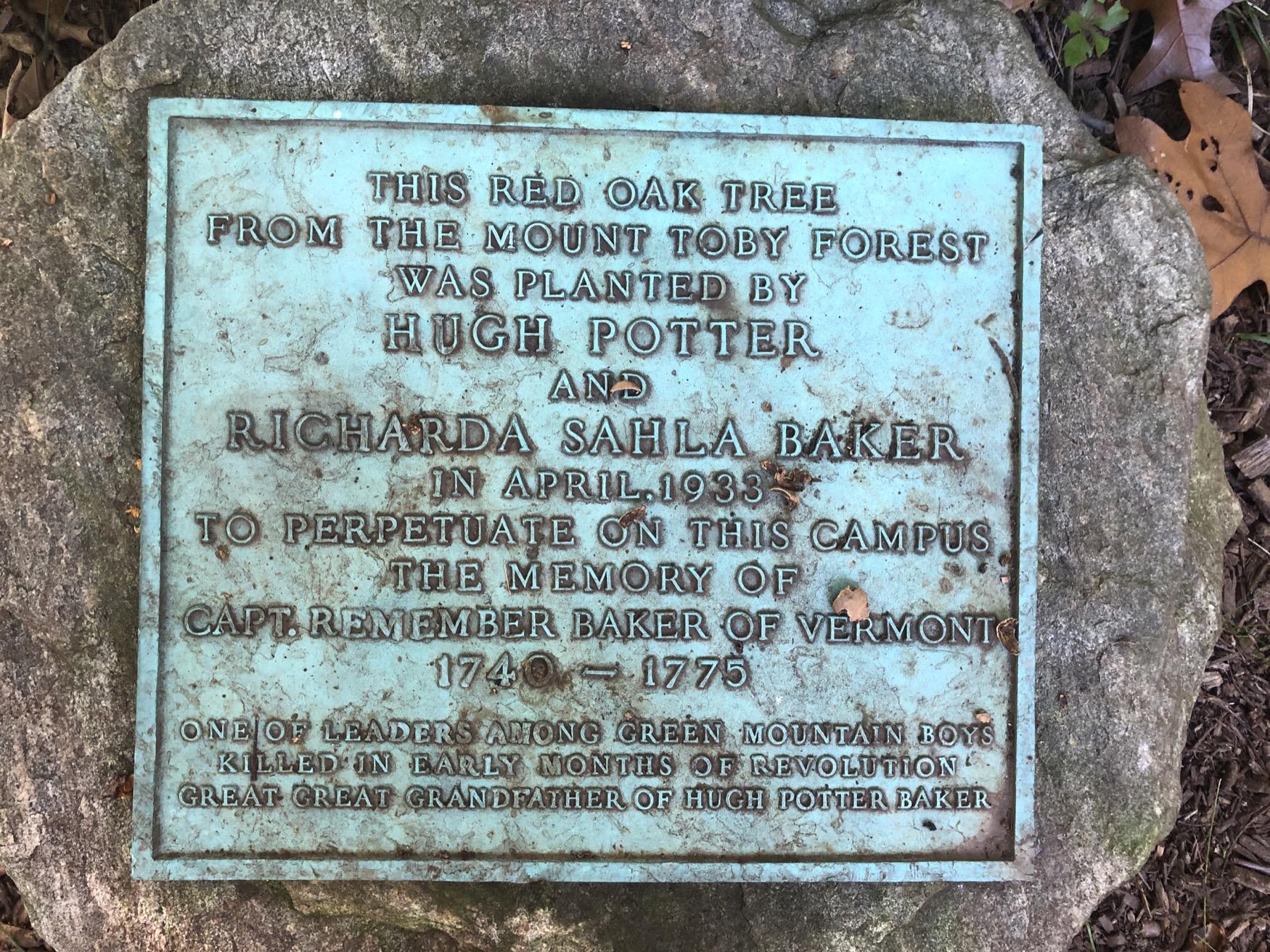 Captain Remember Baker Black Oak