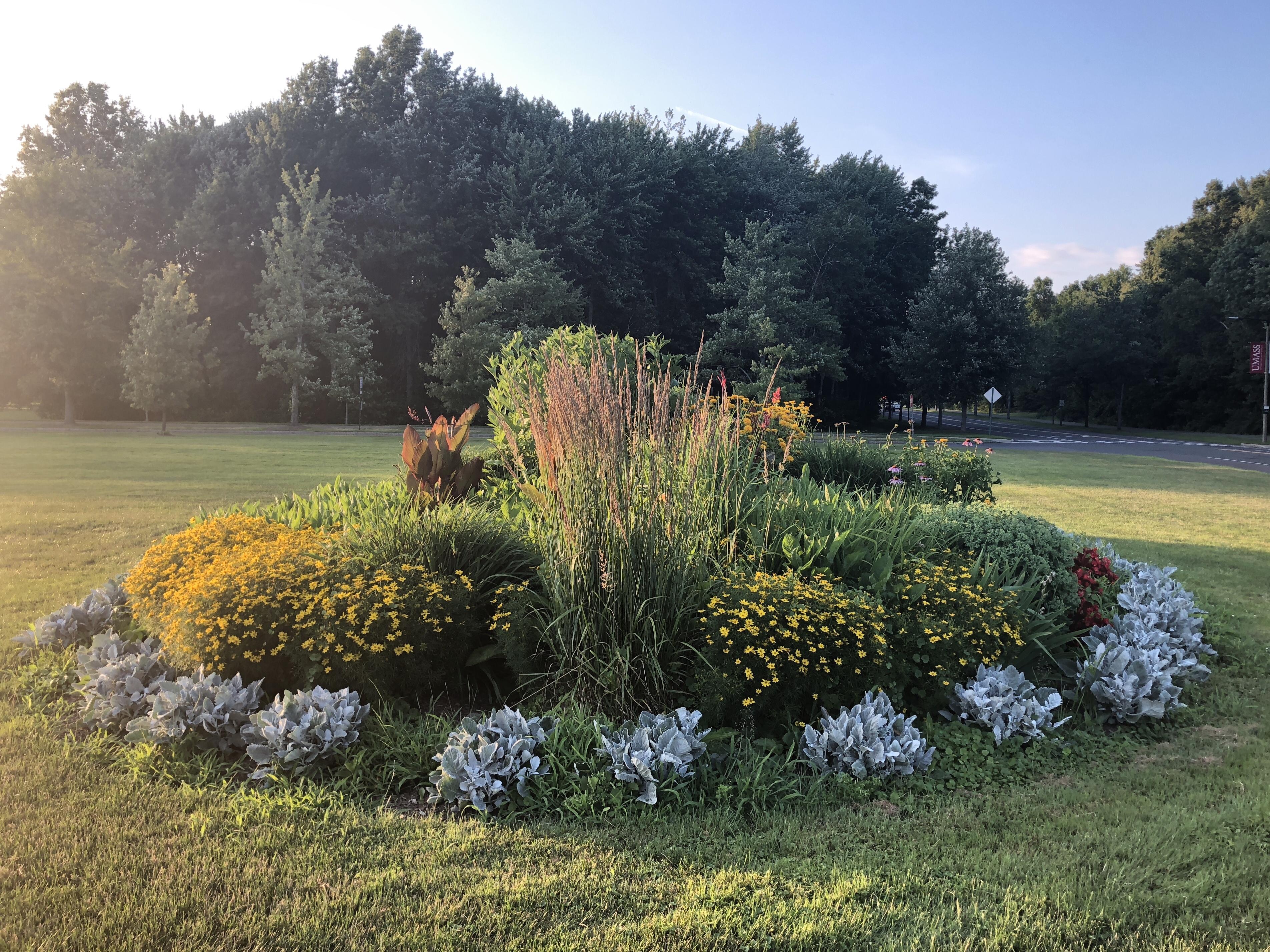 Bernard L. Dallas Tribute Garden