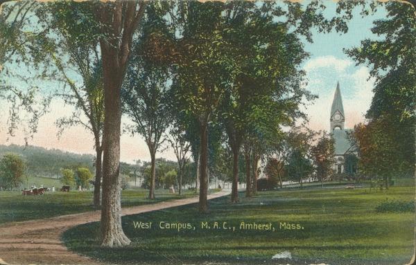 West campus, M.A.C., Amherst, Mass., ca. 1910