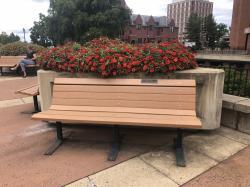 Sigma Phi Epsilon Tribute Bench