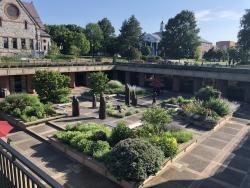Oswald Tippo Tribute Garden
