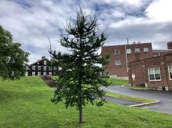 MS3 Class Tree of 2016