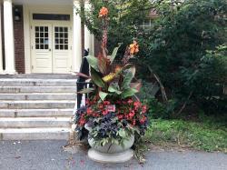 Monica Andreas Tribute Garden