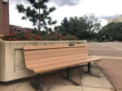 Sigma Kappa Tribute Bench