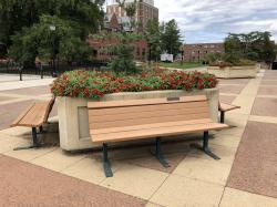 Betsy (Burghardt) & Norman Silcox Tribute Bench