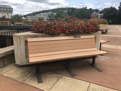 Tau Epsilon Phi Tribute Bench