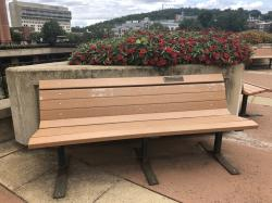 Andrew & Mary Ann Knowles Tribute Bench