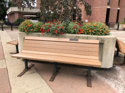 Finegold & Tucker Family Tribute Bench