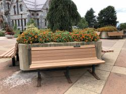 Don & Julie Mayo Family Tribute Bench