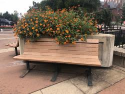 Anne (Heanue) Berard Tribute Bench