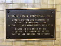 Reuben Edwin Trippensee Plaque