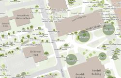 Catalpa Heritage Tree Location