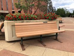Mitch & Sondra Finegold Tribute Bench