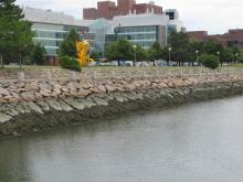 UMass Boston Campus