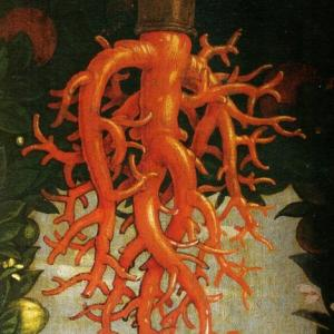 Painting of a circulatory system hovering over parchment.