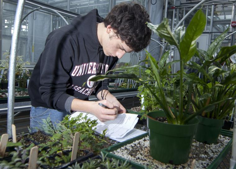 Plant & Soil Sciences (BS)