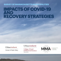 Cover of Impacts of COVID-19 and Recovery Strategies report