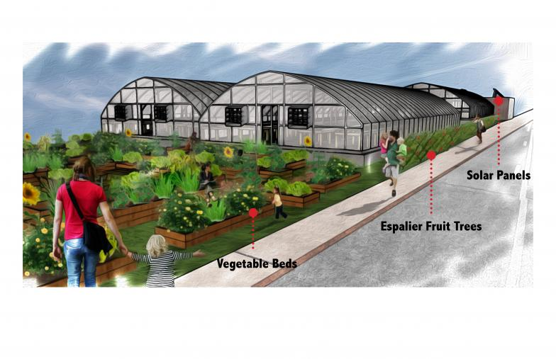 Wellspring Cooperative greenhouses