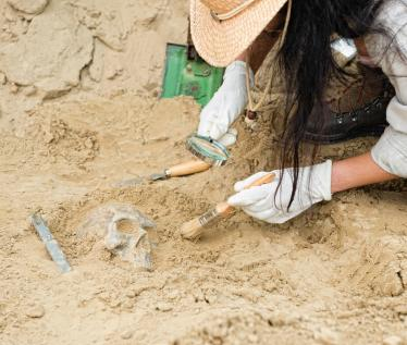 Forensic Anthropology and Bioarchaeology at UMass, Amherst