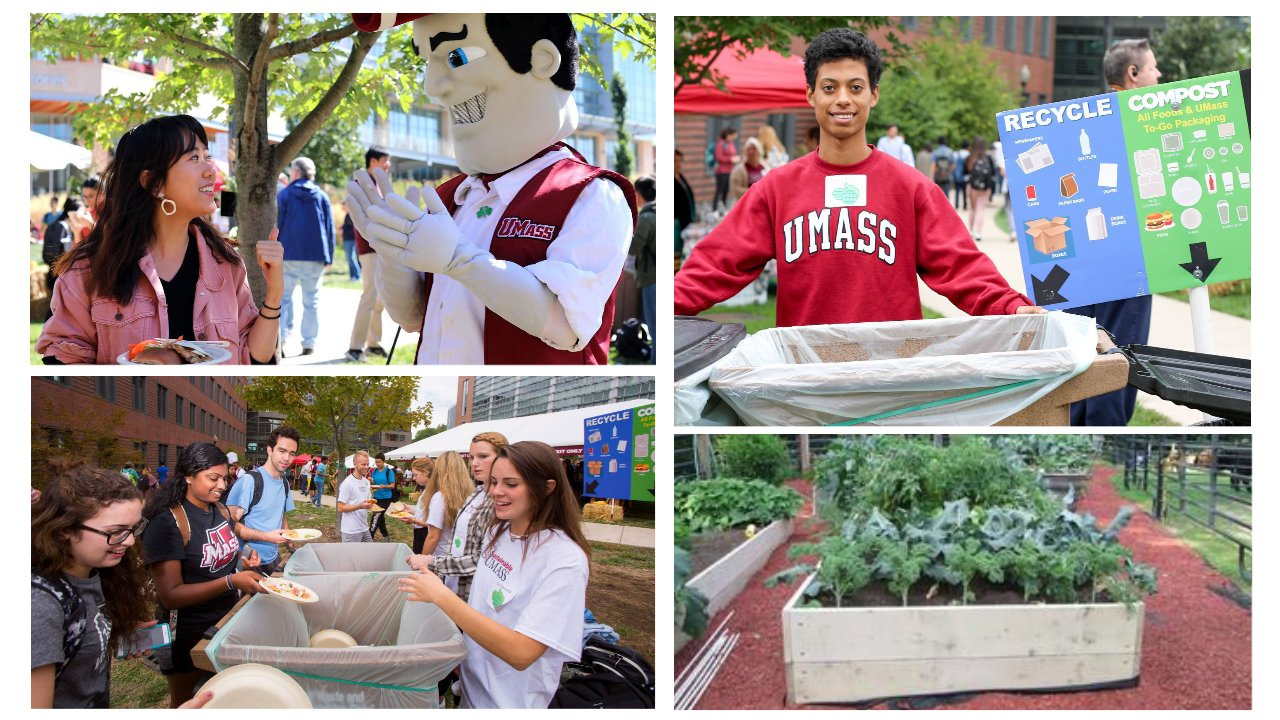 A collage, students volunteers smiling and helping sort food waste, enjoying food at a bbq served on compostable plates and giving the thumbs up with Sam the Minuteman, and an image of black gold compost fertilizing kale in a garden