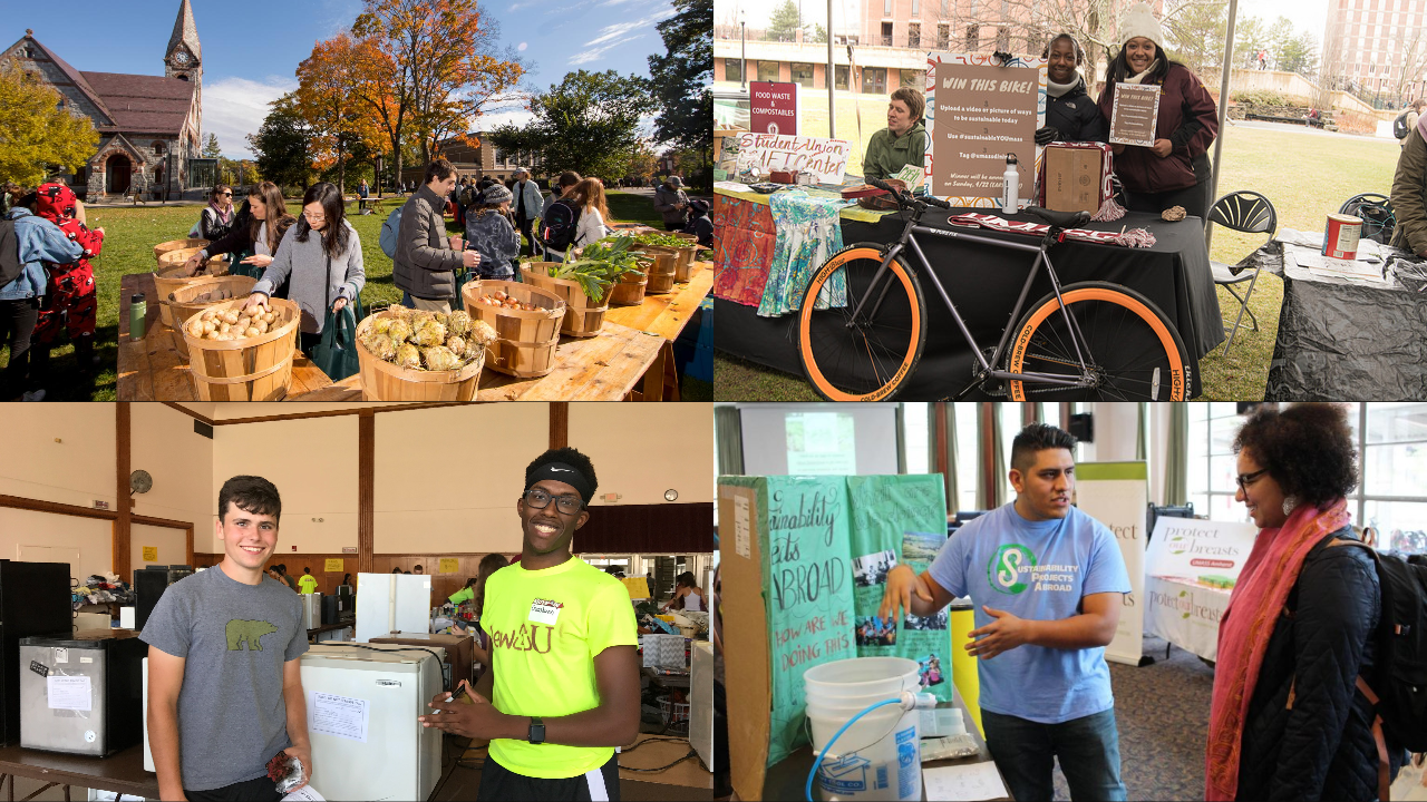 Students tabling or volunteering at different sustainability events