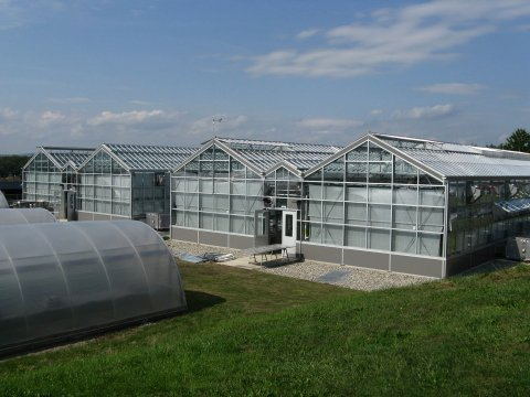 CNS Research & Education Greenhouse at the University of Massachusetts Amherst