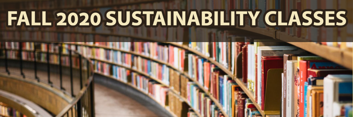 Fall 2020 Sustainability Classes