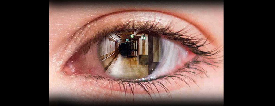 eye in close up with hallway in iris