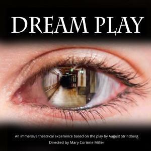 Dream Play Publicity photo: an eye inside