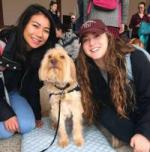 Students with a dog at the Paws Program