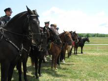 Mounted Unit Training