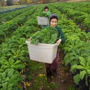 Photo of Student Farmers