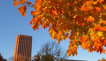 In the background, Du Bois Library rises against a blue sky. In the foreground is a branch with bright orange maple leaves.