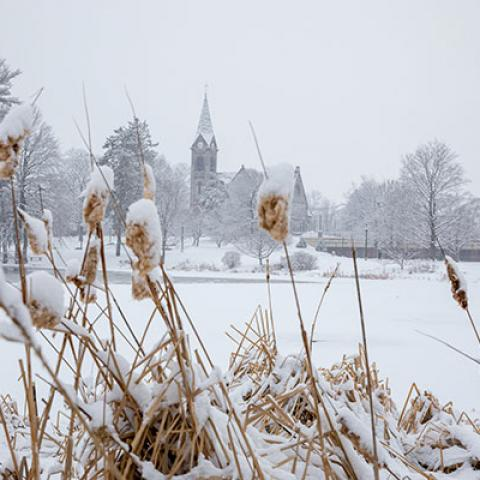 The Old Chapel, seen through reeds across a frozen campus pond on a snowy day